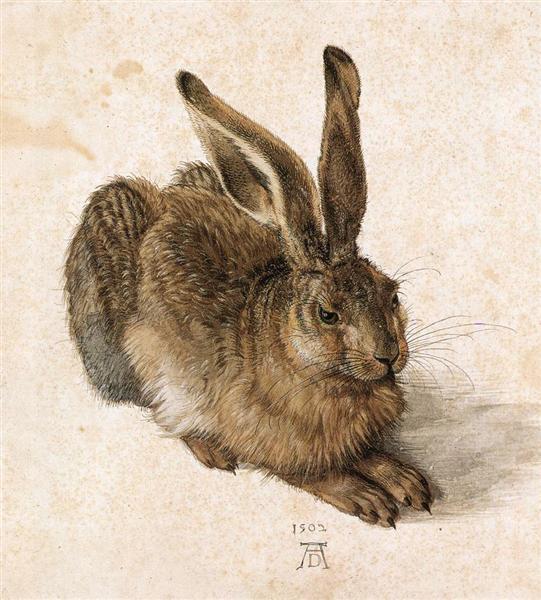 Le Lièvre de Albrecht Dürer est une Aquarelle sur Papier de 25.1 x 22.6 cm de 1502 ©Wikiart